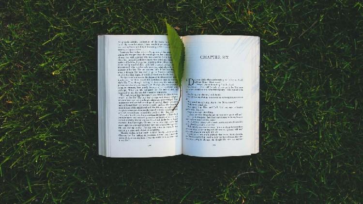 libro tra l'erba