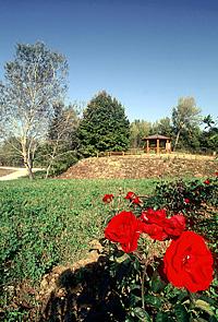 Parco Chico Mendes - foto Marcello Ballerini