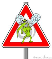 la zanzare può essere un problema sanitario
